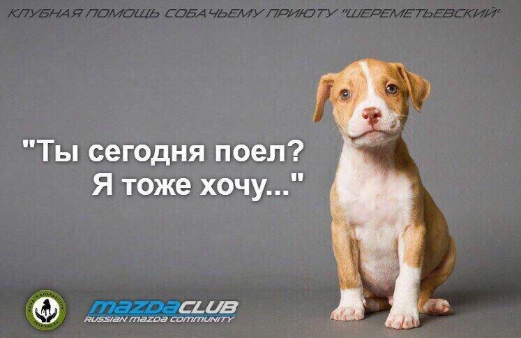 -Z7oXV7vR_A.jpg