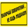 panshin_ov